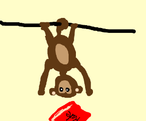 upside down monkey reaching for a rule book