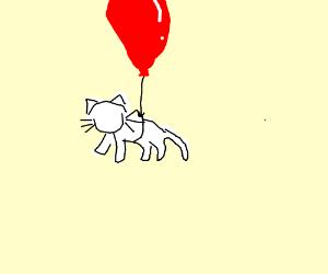 cat on a balloon