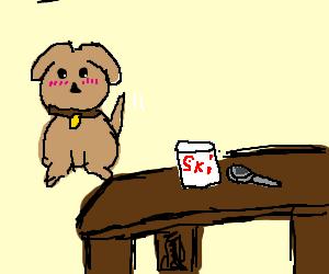 shy dog wants some yogurt