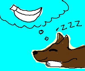 dog dreaming about being a white banana