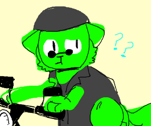 Confused green biker cat