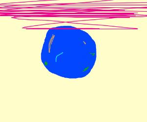 a mouldy blueberry