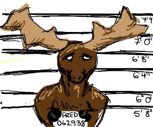 Fred Moose Mug Shot
