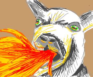 Fire breathing goat