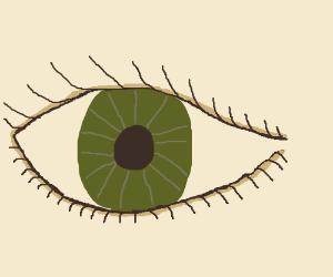 green close up eye