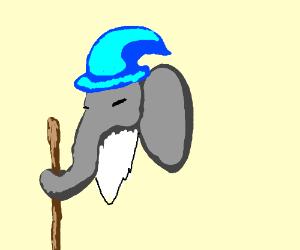 elephant wizard