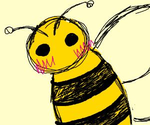 Blushing bee