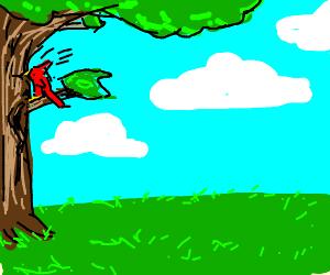 Woodpecker loves wood/tree