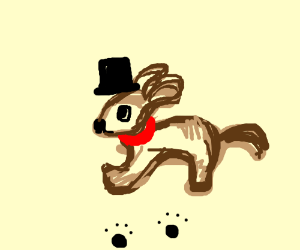 dog wearing a tophat