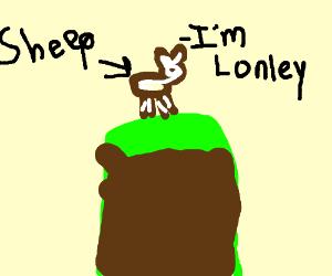 a lonley sheep on a hill