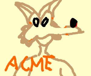 Willie cayote