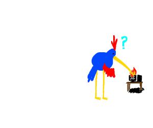 creature w long beak 'squishing' pc screen