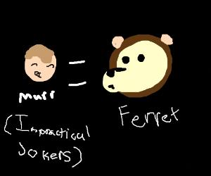 Mega Ferret