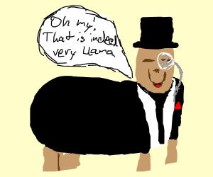 llama confirms llamaness