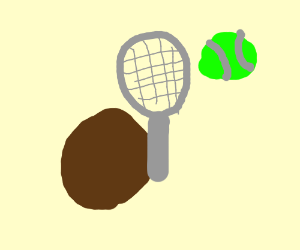 Poo playing tennis