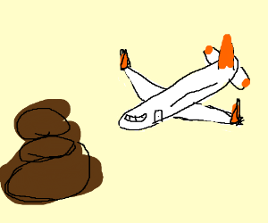 plain flying into poop
