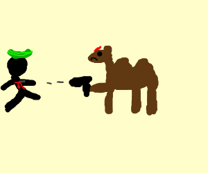 Angry camel shoots guy with cucumber on head