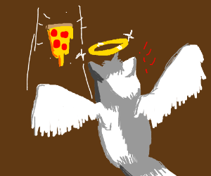 angel cat finally getting pizza