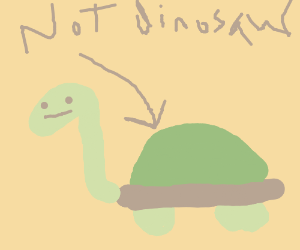 Turtles are not dinosaurs.