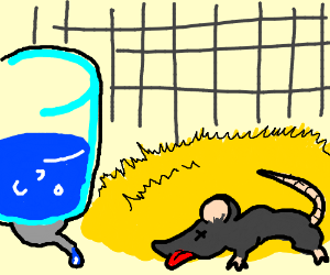 It is important to keep your rat well hydrated