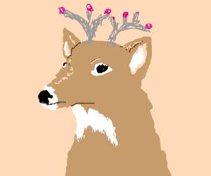 Princess Deer