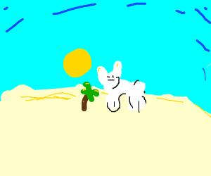 Rabbit staring at tiny palm trees