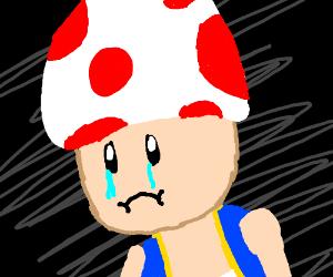 Sad Toad - Drawception