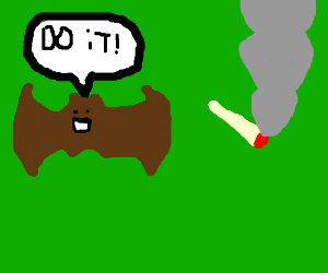 Brown bat supports smoking majahuana