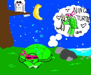 A turtle sleeping beneath a starry sky