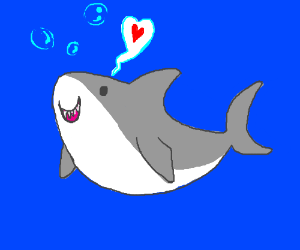 The Nicest Shark