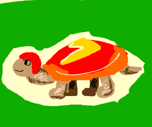 The flash became a turtle