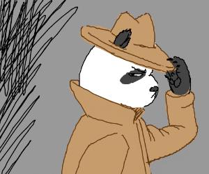 undercover panda