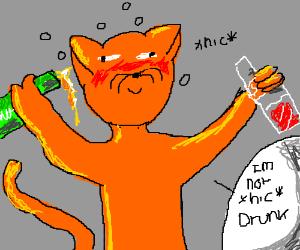 Alcoholic kitty