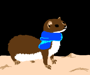 Happy warm weasel with a blue scarf