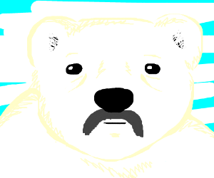 Old polar bear with moustache