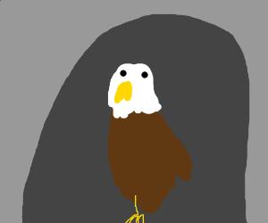 Cave Eagle