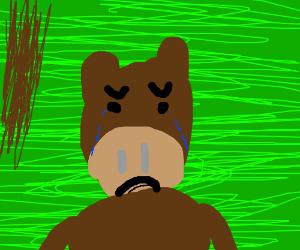 Crying Monkey