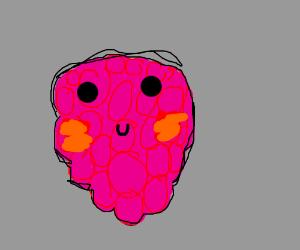 Cute Raspberry