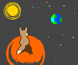 Lonely fox on mars