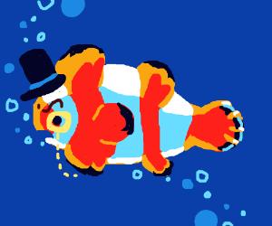 Upper class clown fish