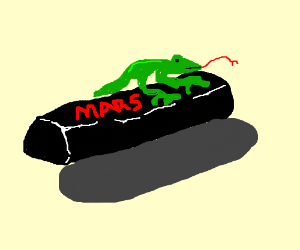 Lizard on a Mars Bar