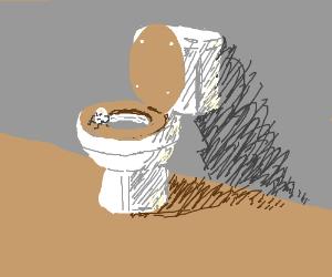 Egg pooping on toilet