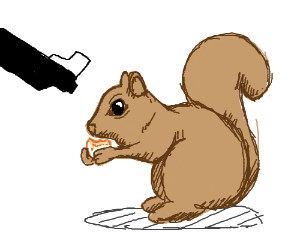 Old man yelling at squirrels - Drawception