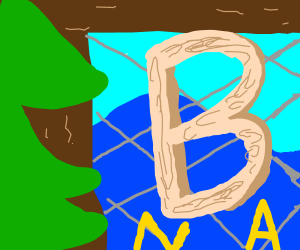The Letter B in a net