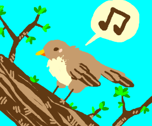 small tan bird