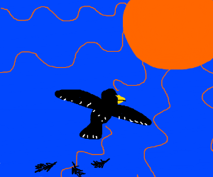 a bird flying to te sun