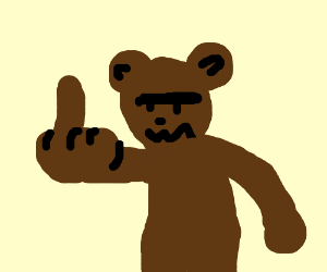 Image result for bear middle finger