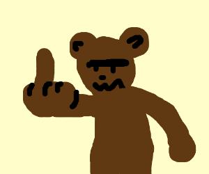 Image result for bear middle finger