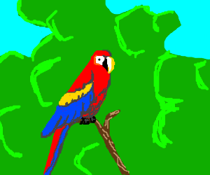 A Macaw Standing On A Branch