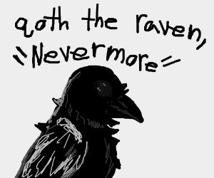 New York Raven